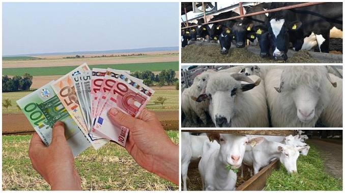 A aparut ghidul solicitantului – Submăsura 4.1 – Investiții în exploatații agricole 2018